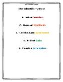 Scientific Method Worksheet - Sink or Float