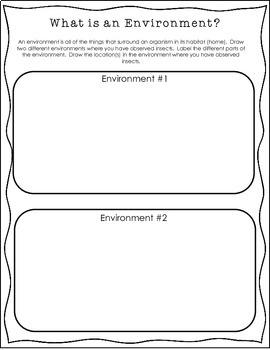 Scientific Method and Bugs- Investigate habitat and environmental factors