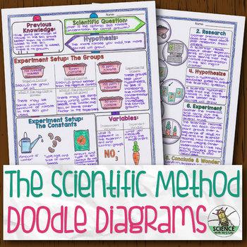 Scientific Method And Experiment Design Biology Doodle Diagram Tpt
