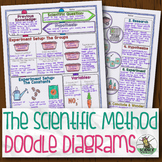 Scientific Method and Experiment Design Biology Doodle Diagram