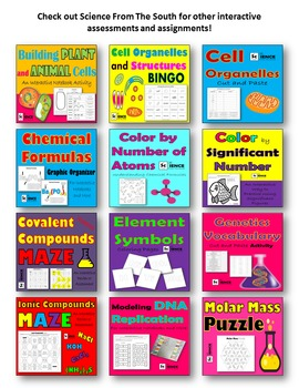 Scientific Method and Vocabulary Cut and Paste Activity