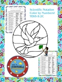 Scientific Notation Color by Numbers (Beginner and Medium) 8.2C