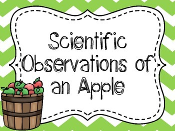 Scientific Observations of an Apple {Great Beginning of the Year Science Lab}