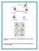 Scientific Revolution & Enlightenment Inquiry Based Visual Activity