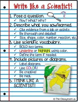 Scientific Writing Poster