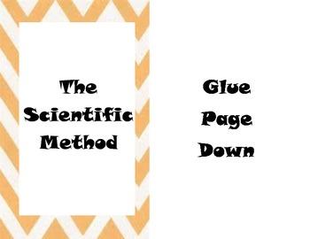 Scientific method interactive notes