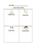 Scientist Observation or Inquiry Sheet