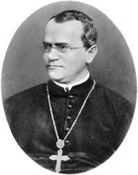 Scientist Priest Report