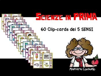 Scienze in PRIMA - i 5 sensi