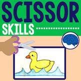 Scissor Skills Cutting Practice