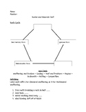 Scott Foresman 5th Grade Rocks and Minerals Chapter Test