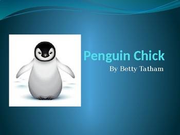 Scott Foresman Reading Street 3rd Grade Penguin Chick