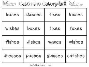 """Scott Foresman Reading Street-First Grade Unit 3 """"Catch the Caterpillar"""""""