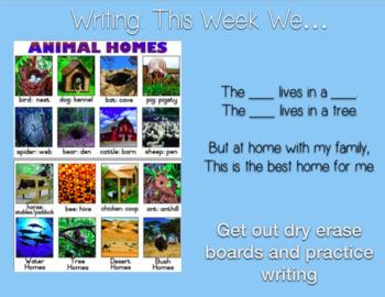 Scott Foresman Reading Street-Kindergarten (Unit 2-Week 5)