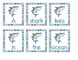 Scrambled Ocean Sentences