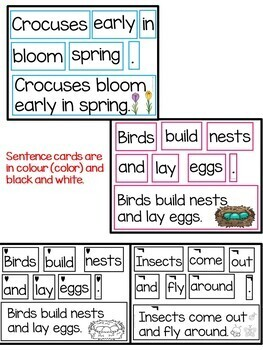 Scrambled Sentences about the Signs of Spring
