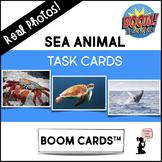 Sea Animal BOOM Cards™ Task Cards - Real Photos!