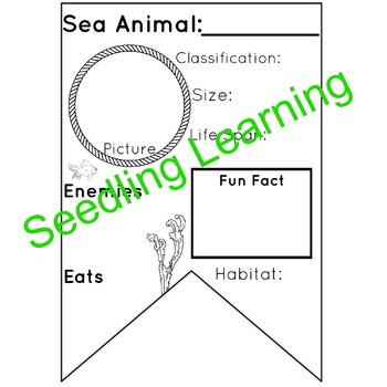 Sea Animal Facts Banner / Pennant