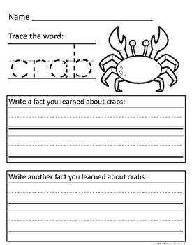 Sea Animal Informational Text Response Sheets