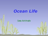 Sea Animal Picture Cards
