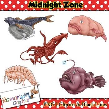 Sea Animals Clip art
