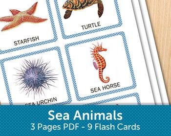 Sea Animals Flash Cards