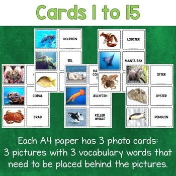 Sea Animals Photo Flash Cards
