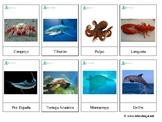 Sea Animals *SPANISH* - Montessori 3-Part-cards