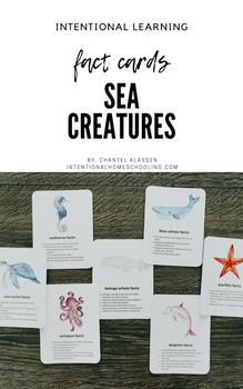 Sea Creature Fact Cards