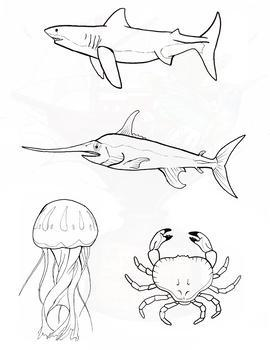 Sea Creatures Clipart