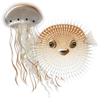 Sea Creatures Food Web / Ecosystem Clip Art