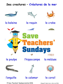 Sea Creatures in French Worksheets, Games, Activities and Flash Cards