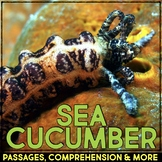 Sea Cucumber: Informational Article, QR Code Research & Fact Sort