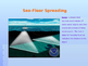 Sea Floor Spreading Power Point Presentation