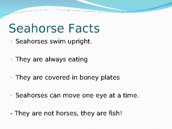 Sea Horse Free Powerpoint Pages Slideshow Presentation