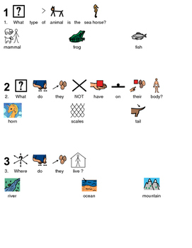 Sea Horse - picture supported text lesson article questions visuals PDF