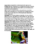 Sea Horse - review article facts information questions voc