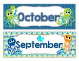 Sea Life COMPLETE Calendar Set