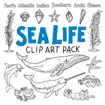 Sea Life Clip Art and Page Borders Pack