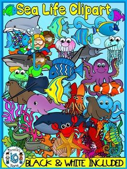 Sea Life, Sea Animals, Ocean Animals Clipart Graphics-162