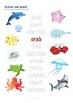 Sea Life Word Search, Unscramble, Colours; ESL