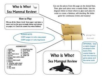 Sea Mammal Review Game