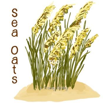 Sea Oats, sea oats clip art, sea oats Printable Tracey Gur