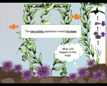Sea Otter Keystone Species Powerpoint Animation