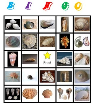 Sea Shells Bingo