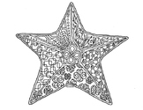 Sea Star Zentangle Coloring Page