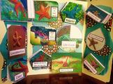 Sea Stars Lap Book