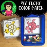 Sea Turtle Color Match