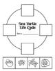 Sea Turtle Learning Unit Common Core Aligned