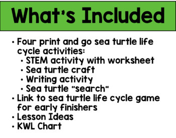 Sea Turtle Life Cycle Activities Bundle (Craft, STEM, Writing and More!)